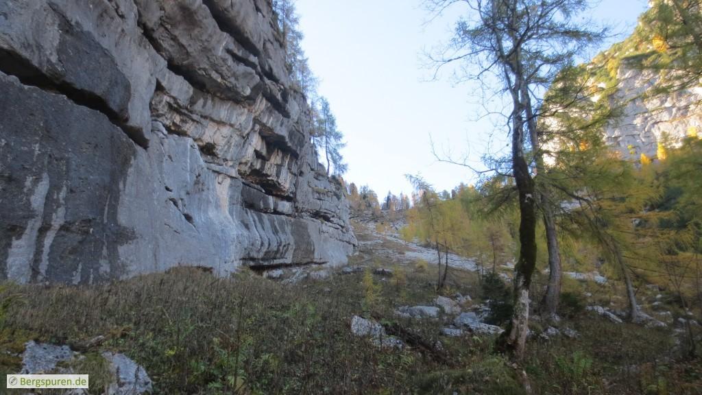 "Hochtal ""Baumgarten"" oberhalb des eingeschossenen Steigs"