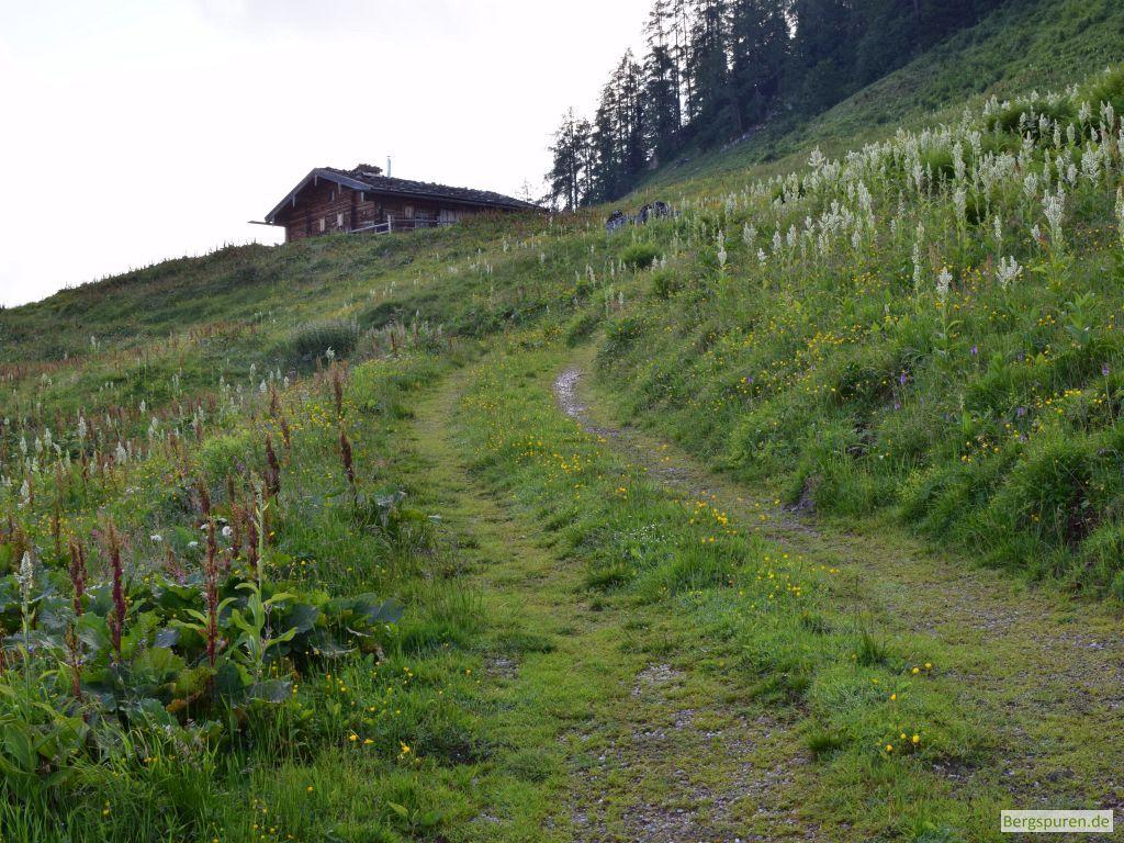 Oberste Hütte der Priesbergalmen