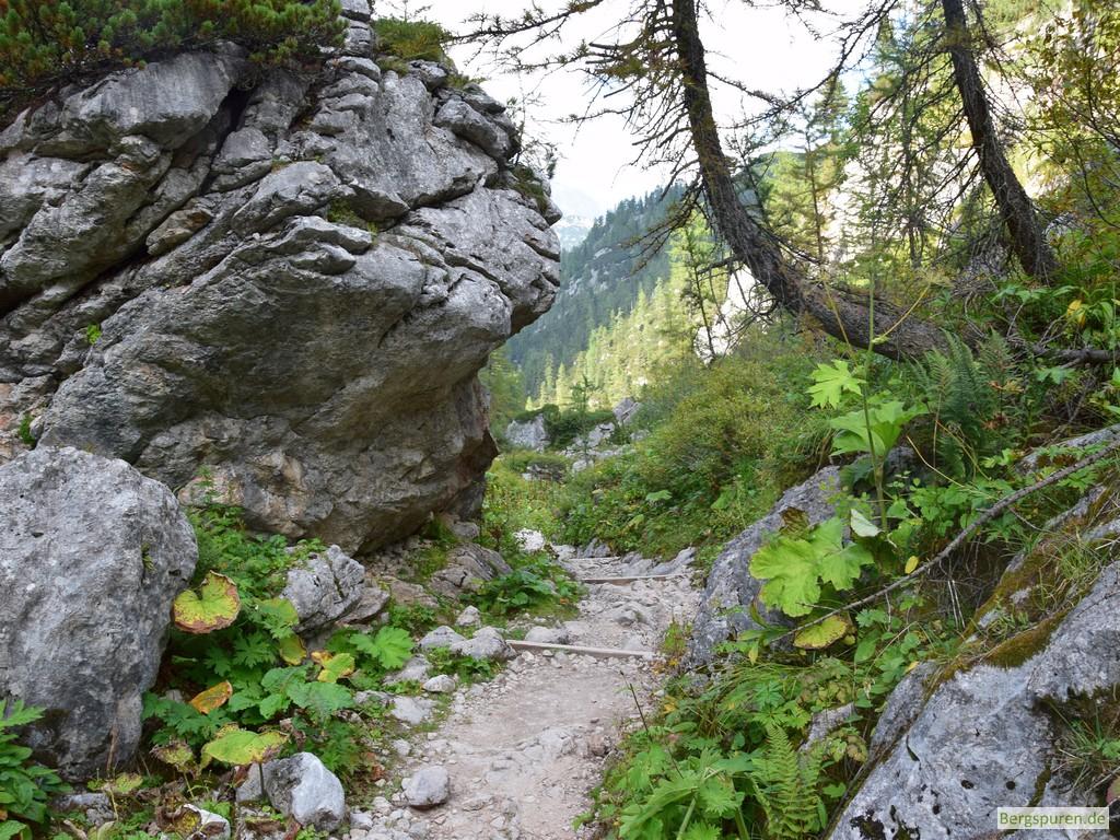 Weg zwischen Funtensee und Saugasse