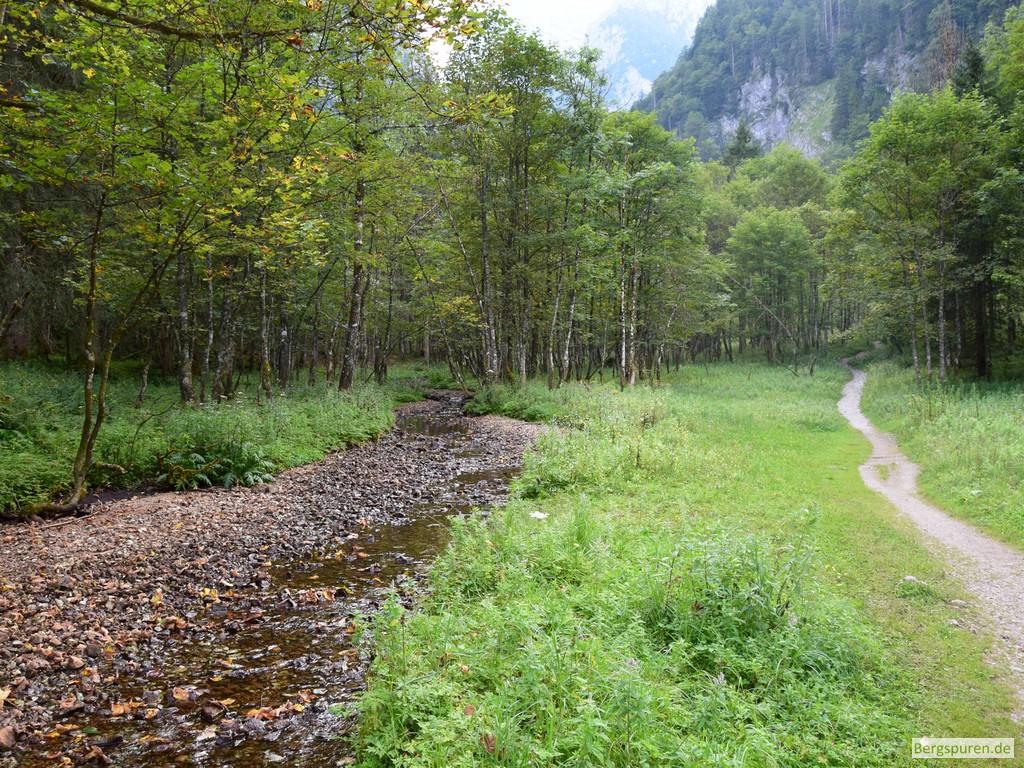 Schrainbach mit wenig Wasser