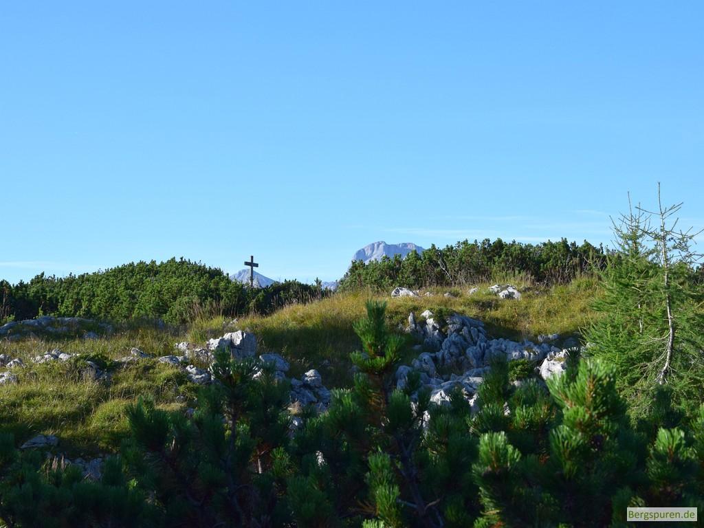 Gotzentauern - Gipfelkreuz und Latschen