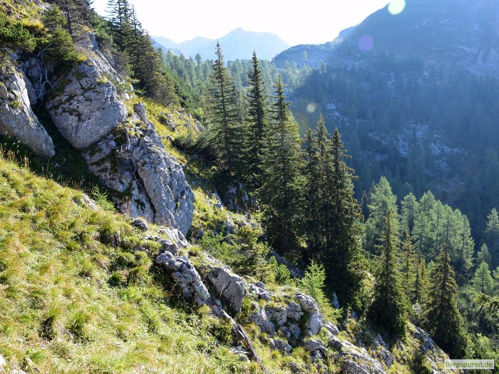 Gotzentauern - Steile Grashänge