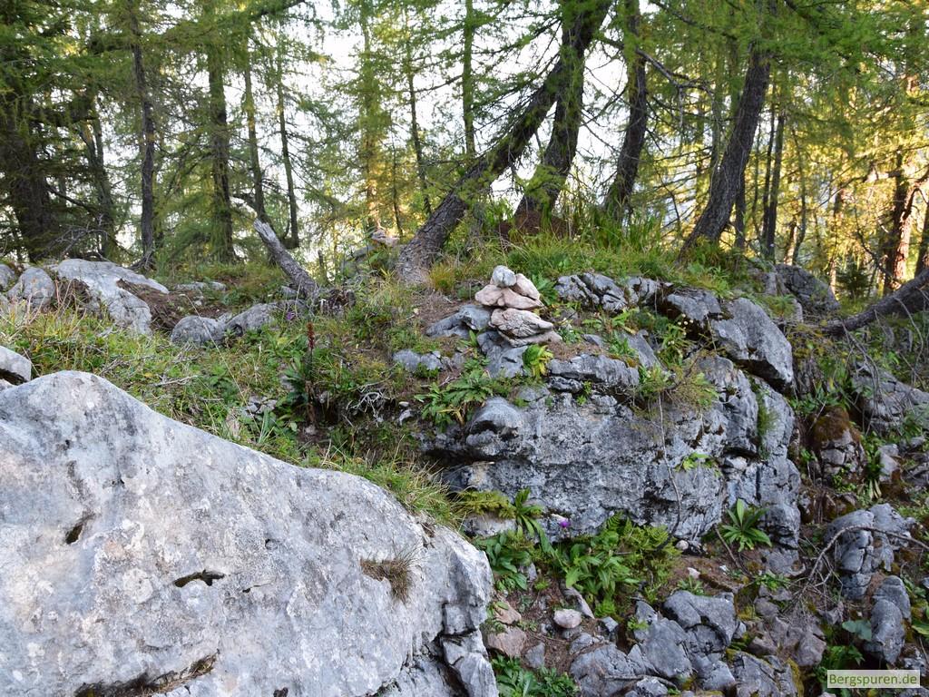 Steindaube am Weg zum Gotzentauern