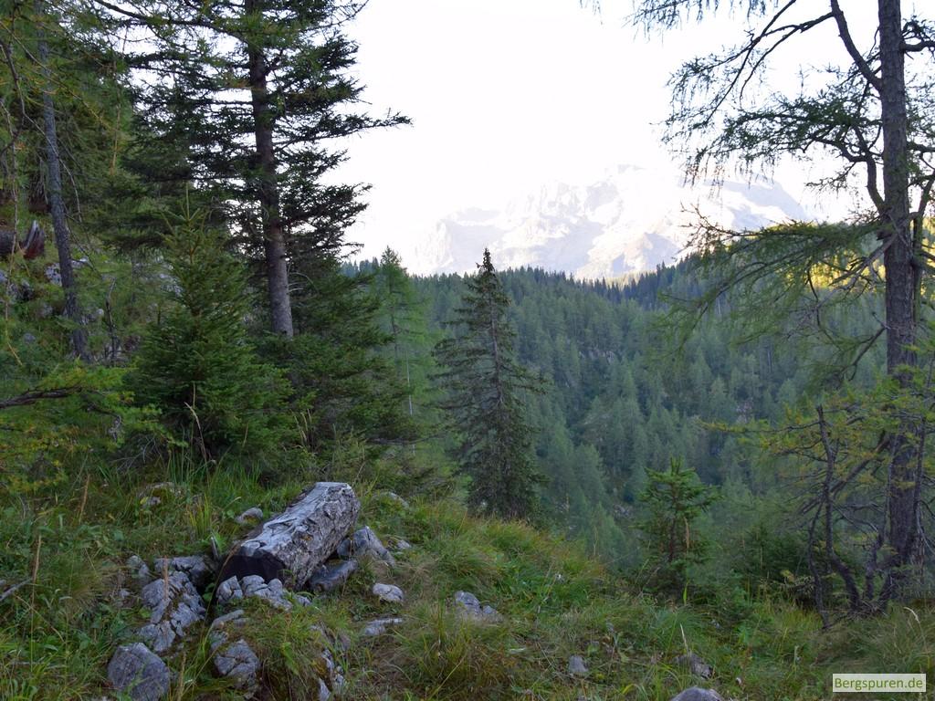 Holzbank am Mittleren Hirschenlauf