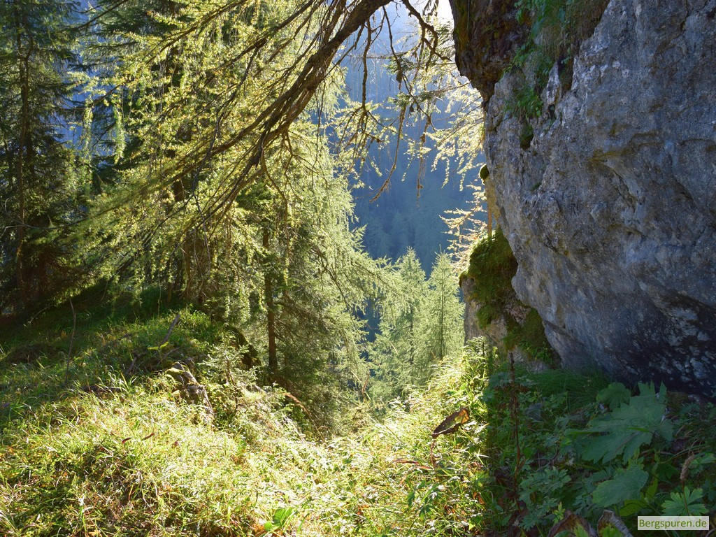 Felswand und Bäume am Mittleren Hirschenlauf