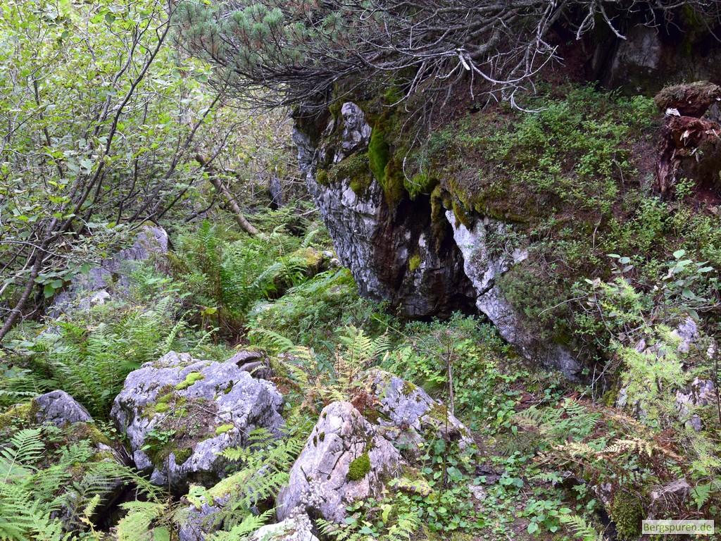 Unübersichtliches Gelände am Mittlerer Hirschenlauf