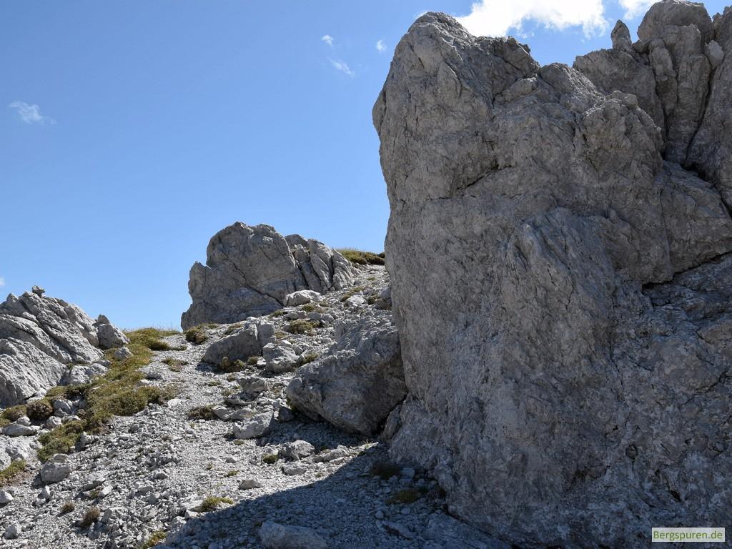 Hinterbergkopf - Letzte Meter zum Gipfel