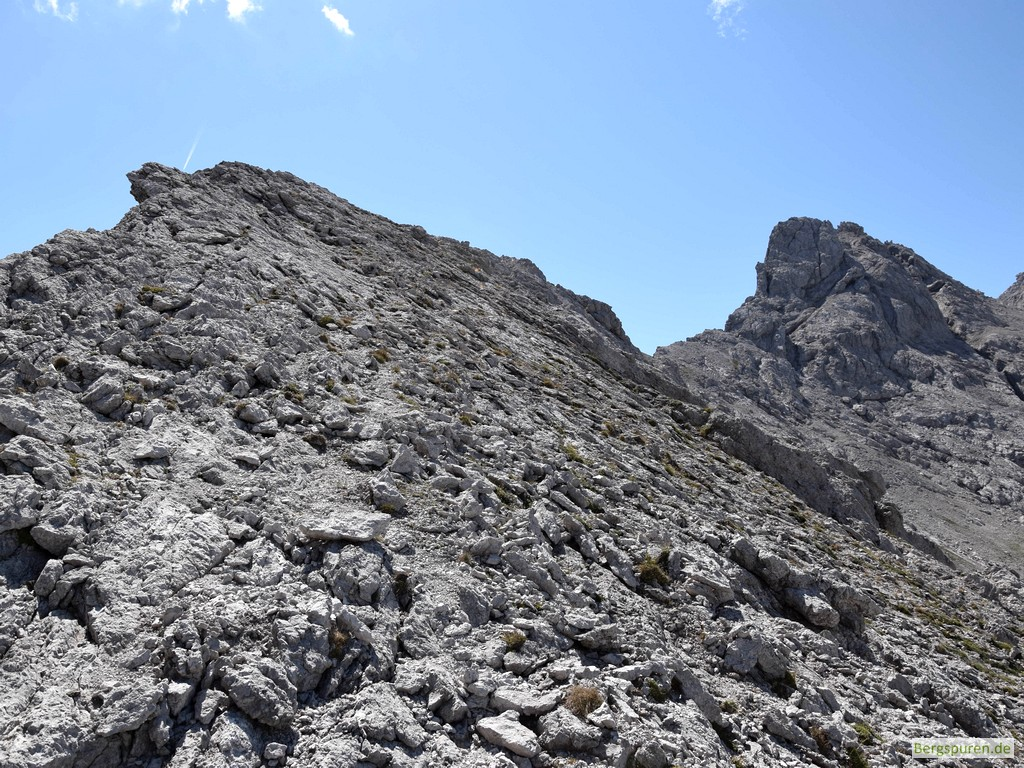 Hinterbergkopf - Gipfelrücken