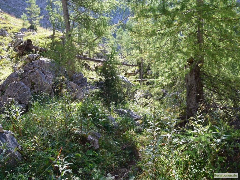 Beginn des Eisenpfads im Landtal