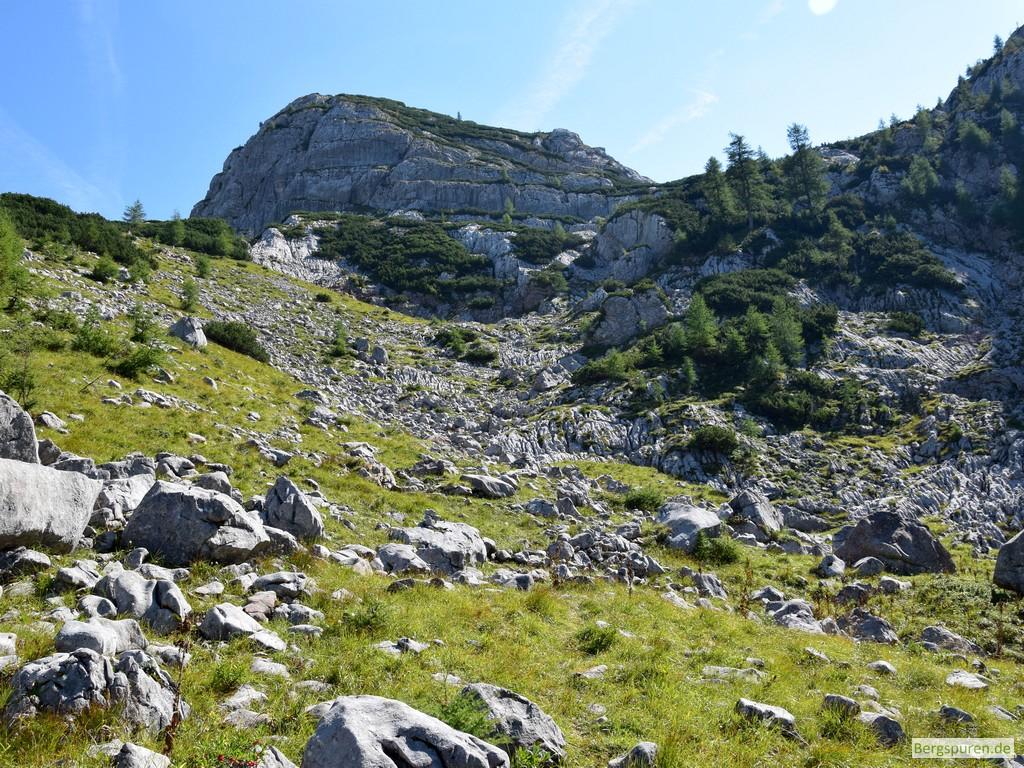 Felsen, Gras und Latschen am Weg zum Hochsäul - Im Hintergrund der Graue Kopf