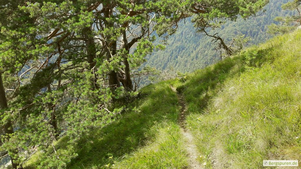 Steile Grashänge am Koialuweisteig