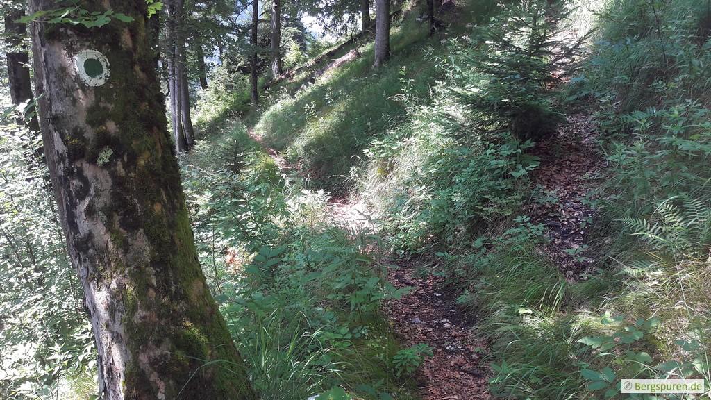 Wegteilung am Koialuwei-Steig