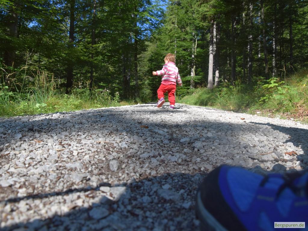 Kleinkind wandert auf Forstweg