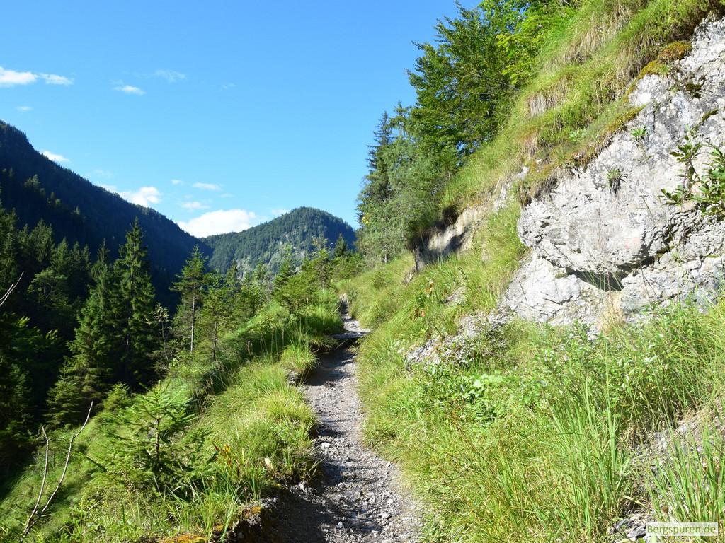Schmaler Steig zur Reiteralm bei Weißbach
