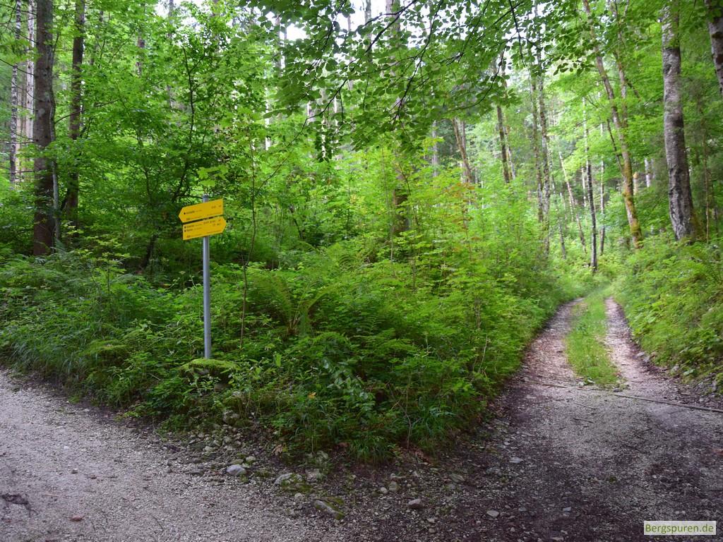 Abzweigung des Steigs ins Sittersbachtal