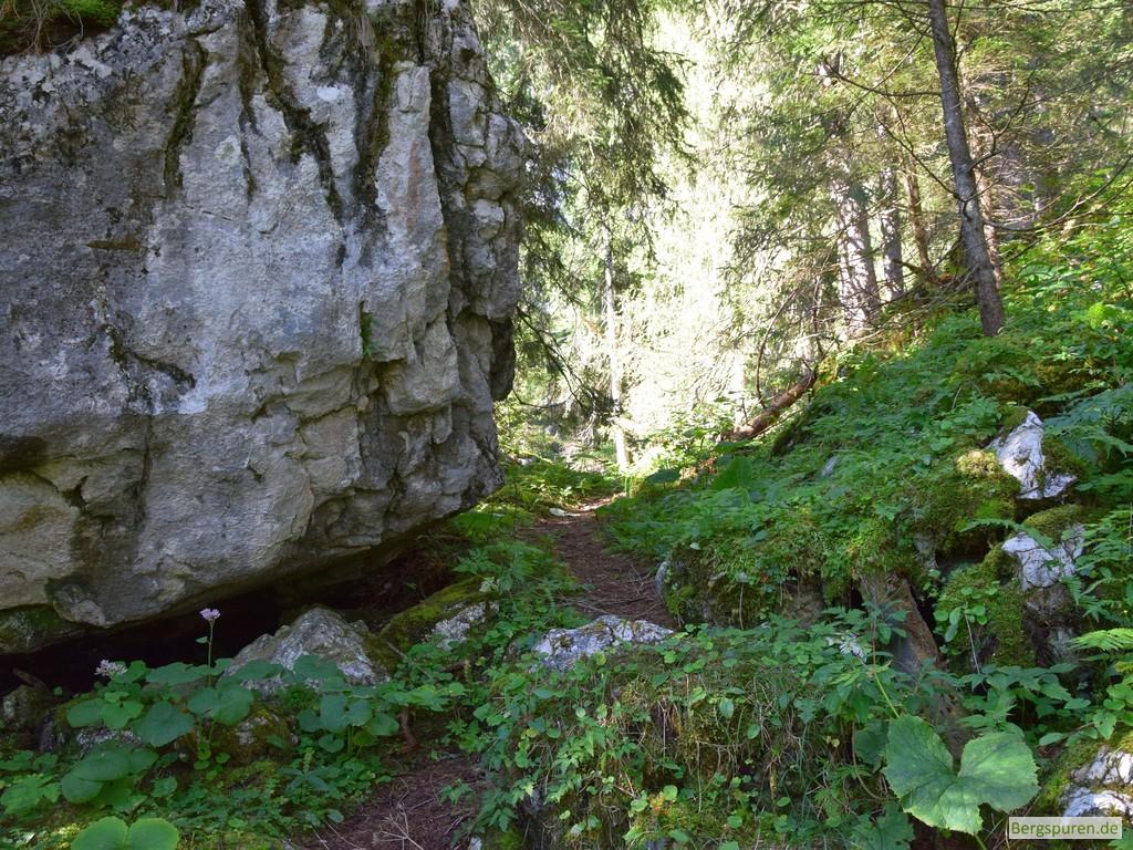 Großer Felsen vor der Sittersbachstrub