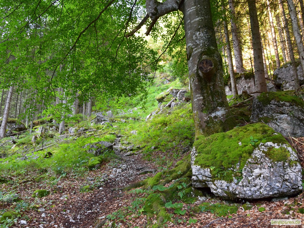 Steig ins Sittersbachtal