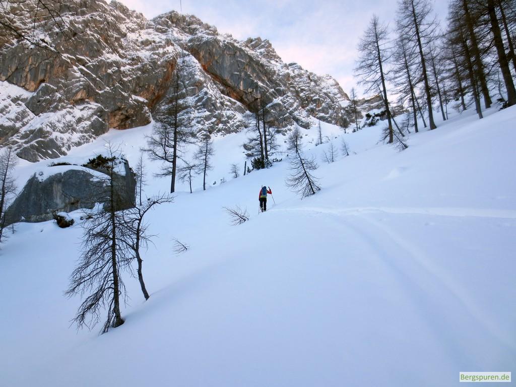 Skitour Birnhorn - Waldgrenze unterhalb des Ebersbergkars