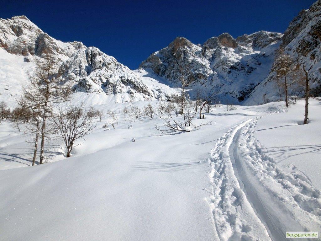 Skitour Buchauer Scharte oberhalb der Waldgrenze
