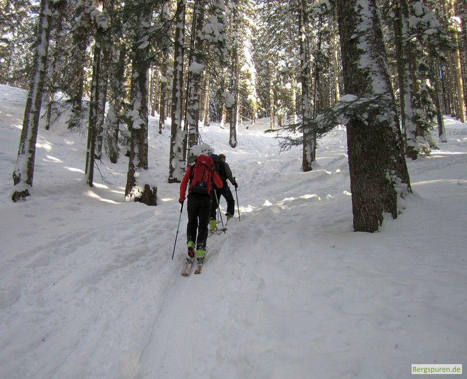 Skitourengeher auf dem Weg zum Gamsknogel - Aufstieg im verschneiten Wald