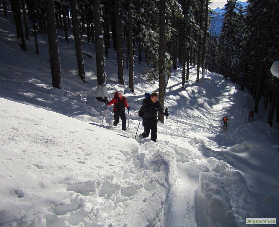 Skitour Gamsknogel: Ende des Forstwegs