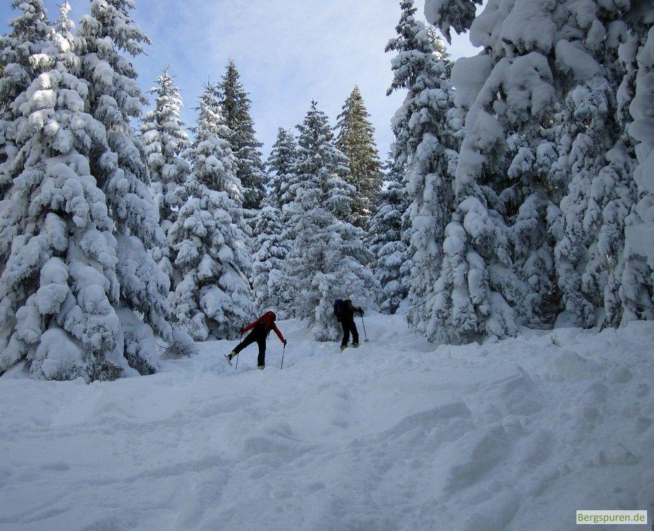 Tief verschneiter Wald beim Aufstieg zum Gamsknogel