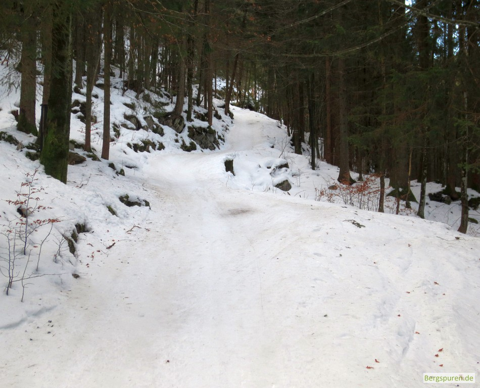 Aufstiegsweg am Jenner (Hochbahn)