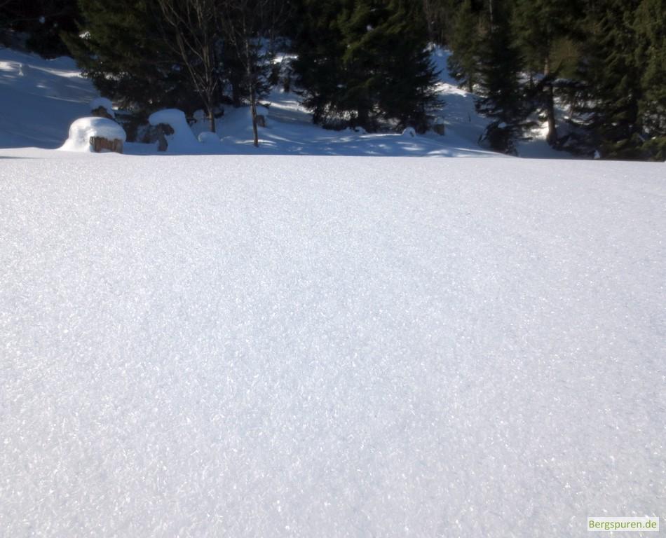 Unberührte Schneefläche am Weg zum Hohen Laafeld