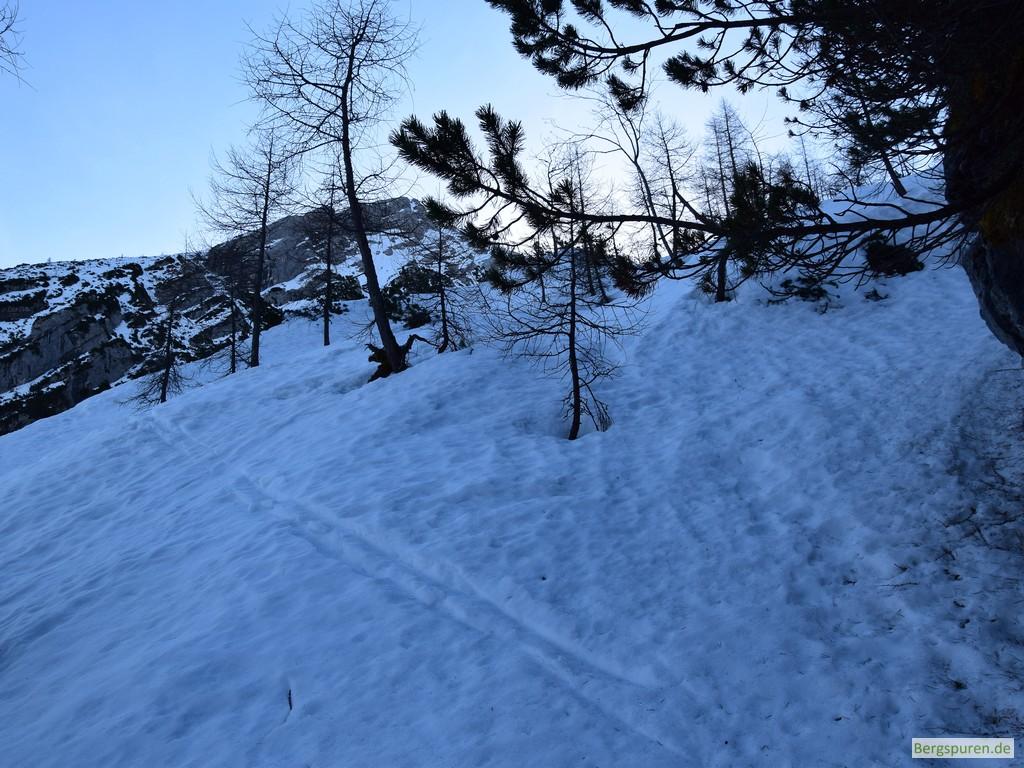 Skitouren-Aufstiegsspur im Sittersbachtal