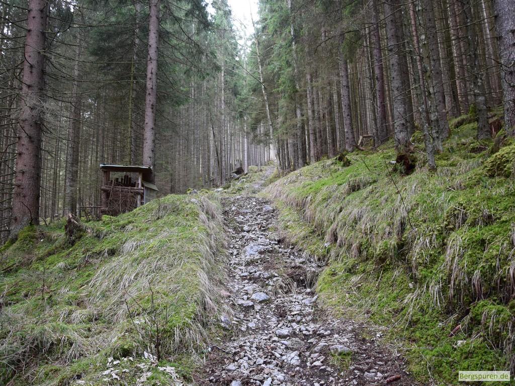 Steig zur Sittersbach-Holzstube