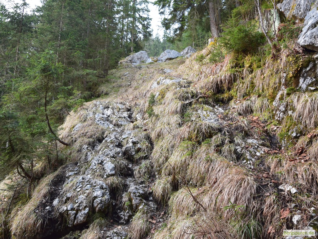 Steig ins Sittersbachtal - erste Steilstufe
